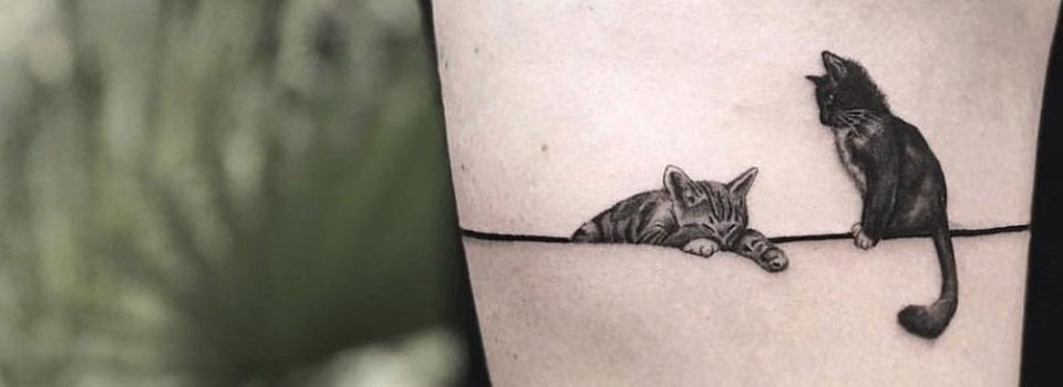As 60 Tatuagens de Gato Mais Delicadas Que Você Já Viu