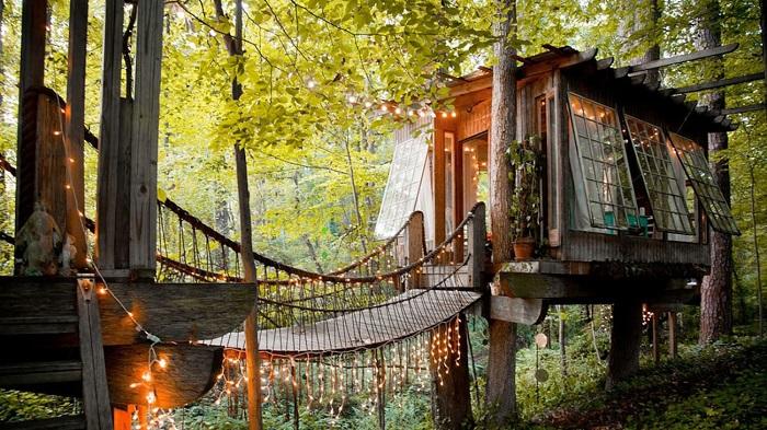 Existem 1400 casas na árvores listadas no Airbnb.