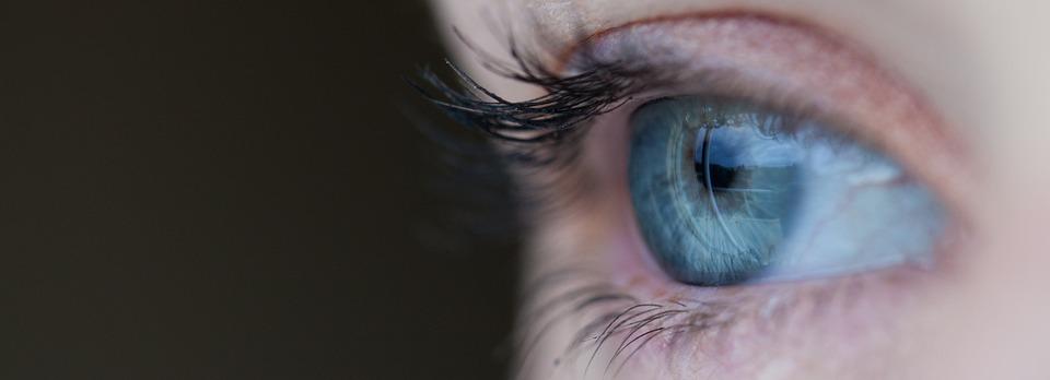 é possível transplantar um olho inteiro