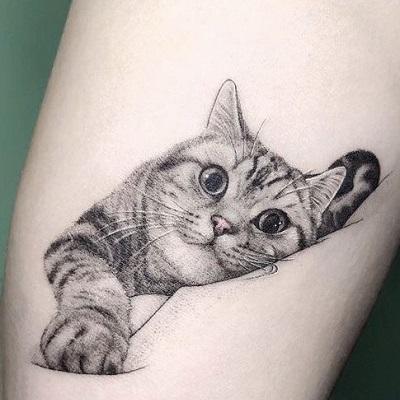 tatuagem grande gato realista