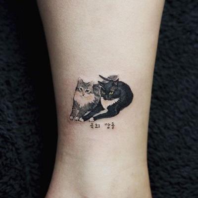 tatuagem realista de dois gatos