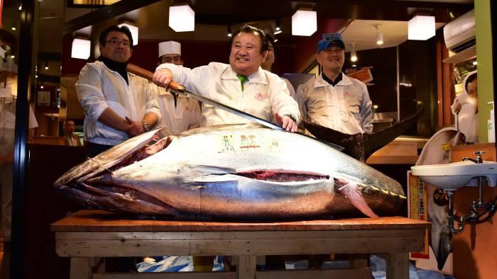 Atum é o peixe mais caro do mundo vendido por 3 milhões de dólares